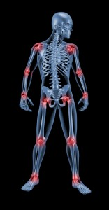 medical-skeleton-highlighting-joints-health-wellness-chiropractic