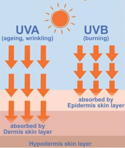 sunscreen-tanning-sunlight-health-skin-wellness