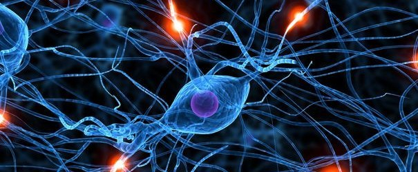 nervous-system-breakdown-subluxations-interference-health-back-pain-chiropractic