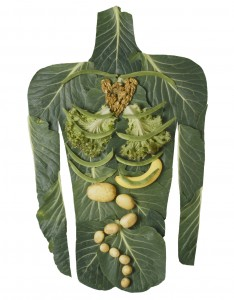 healthy-gut-wellness-ottawa-chiropractic