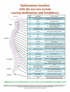 nerve-function-chart-chiropractic-adjustments-health-heal-subluxations