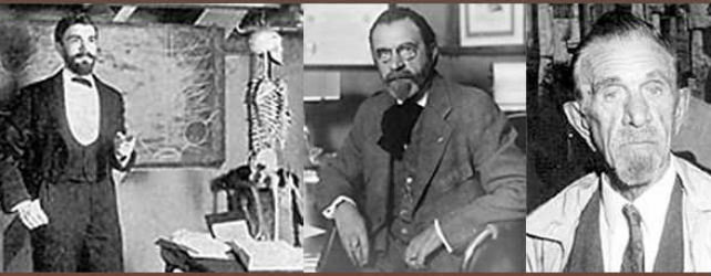 The History of Chiropractic