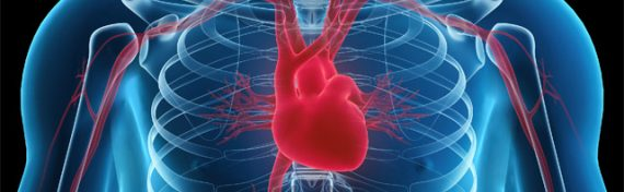 Cardiovascular Disease: Are You At Risk?