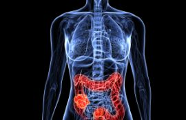 Bones, Joints and Inflammation…What's Food Got To Do With It?