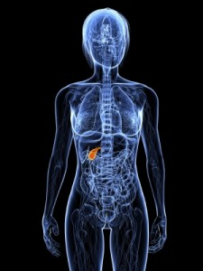 gallbladder-pancreas-health