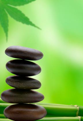 balance-detox-sante